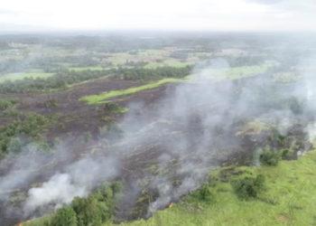 Lahan gambut di Kolaka Timur sampai saat ini masih dilalap api. Karhutla di Koltim diprediksi akan terjadi hingga beberapa hari kedepan. (Foto Manggala Agni)